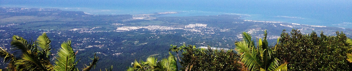 view from El Yunque Rainforest